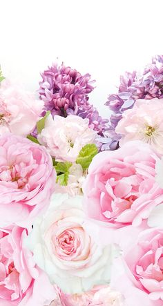 Pink and purple peonies