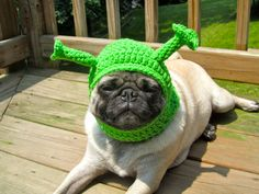 hi.. yes, i would like the pug AND the hat please. $16 from sweethoots on @Etsy!