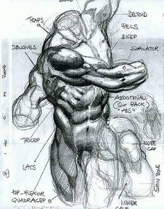 Ideas For Drawing Body Anatomy Simone Bianchi Human Anatomy Drawing, Human Figure Drawing, Figure Sketching, Figure Drawing Reference, Body Drawing, Anatomy Reference, Life Drawing, Anatomy Sketches, Body Sketches