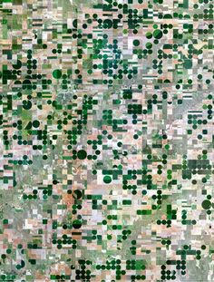 Pivot-irrigation fields carpet the land around Edson, Kansas.  Satellite Images Reveal Humanity's Mighty Impact, for Better or Worse - CityLab