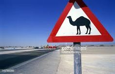 Image result for arabic street signs Sign Boards, Street Signs, Signage, Reading, Regulatory Signs, Billboard, Reading Books, Signs, Shop Signs