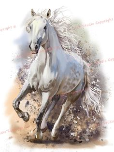White Horse Running Mixed Media Painting Art W Gallery Wrap