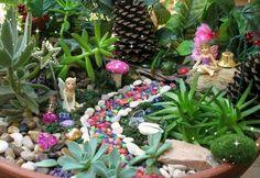 mini fairy garden designs plants accessories