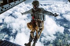 Colombian Daredevil Dog Skydives For Military Training, http://photovide.com/daredevil-dog-skydives/