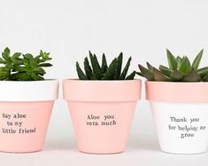 Modern personalized eco-friendly plant pots & by ChickadeePots Succulent Pots, Planting Succulents, Potted Plants, Plant Pots, Thank You Teacher Gifts, Teacher Christmas Gifts, Teacher Appreciation Gifts, Gifts For Father, Gifts For Family