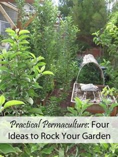 Practical Permaculture: Four Ideas to Rock Your Garden