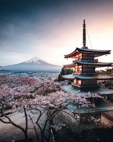 Chureito Pagoda is an iconic attraction on a hilltop facing Mt. Fuji in Arakurayama Sengen Park in Fujiyoshida, Japan, that's reached via… Nature Architecture, Monte Fuji, Visit Japan, Japan Photo, Solo Travel, Travel Tips, Travel Ideas, Travel Inspiration, Japan Travel