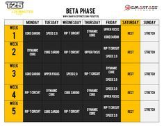 In Case I Forget: The Focus T25 Beta Schedule - 2 Weeks Until We Start This :)