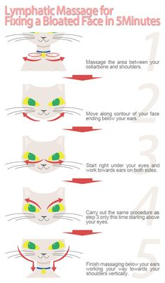 I didn't know this was a long held secret problem for cats.The easiest way to slim your face is to get rid of excess water retention crowding you face making you look bloated. Fix bloatedness in your face. Massage Tips, Face Massage, Massage Therapy, Bloated Face, Lymphatic Drainage Massage, Water Retention Remedies, Face Exercises, Face Yoga, Chubby Cheeks