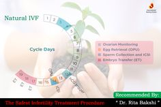 Natural #IVF works within a woman's normal monthly cycle to collect the one egg her ovaries naturally release. The single resultant #embryo is implanted in her uterus so there is no chance of multiple births. Read more: