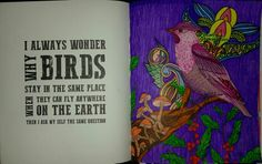 Coloring Book For Adults My Own World Antistress Renebook Lady Bird