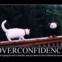 """Overconfidence can kill! http://www.gata.viralphotos.net"" Photo taken by @noalarmclocks on Instagram, pinned via the InstaPin iOS App! http://www.instapinapp.com (01/29/2015)"