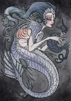 the Siren and the Seahorse  by Caitlin Hackett
