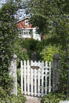 portti,portin pylväs,betoni,kärhö,klematis,köynnöstuki,kaariportti,puutarha,piha
