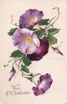 MATIN LUMINEUX: Les fleurs de