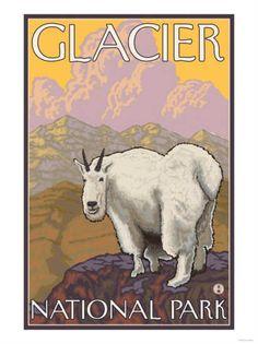 Glacier National Park, Montana - Mountain Goat - Lantern Press Artwork (Art Print Available) Goat Art, Park Art, Free Canvas, Poster Prints, Art Prints, Block Prints, Stock Art, Vintage Travel Posters, Lanterns