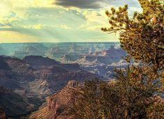 Good morning, Grand Canyon