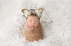 Deer Photography, Newborn Photography Props, Photography Outfits, Children Photography, Newborn Pictures, Baby Pictures, Newborn Pics, Couple Pictures, Family Pictures