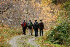 El turismo de naturaleza aumenta en España - https://www.renovablesverdes.com/turismo-naturaleza-aumenta-espana/