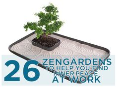 26 Zen Gardens To Help You Find Inner Peace At Work