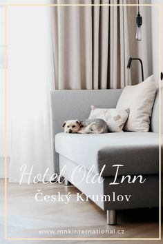 Travelling to UNESCO heritage town Český Krumlov and wondering where to stay? Here is a review of the hotel OldInn right on one of the most beautiful squares. | travelcouple #hotelreview #ceskykrumlov #oldinnhotel #travelwithdogs