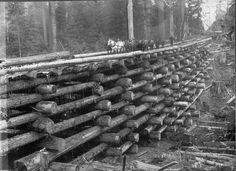 logging | logging railroad bridge for winter access contributed by cathe ziereis