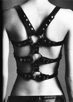 Kt so leather harness