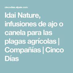 Idai Nature, infusiones de ajo o canela para las plagas agrícolas | Compañías | Cinco Días