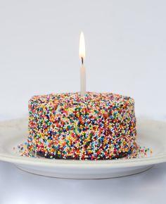 Mini Funfetti Sprinkles Cake Recipe Perfect Cake Recipe, Funfetti Cake, Springform Pan, Secret Recipe, Mini Cakes, Tray Bakes, Sour Cream, Birthday Candles, Sprinkles