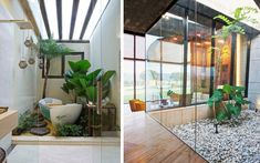 | Viviendas con jardín interior