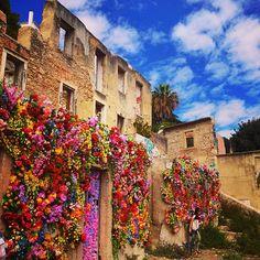 These abandoned houses near Castelo de São Jorge in Lisbon were transformed into colourful vertical gardens by a local artist. - Urban Adventures Blog