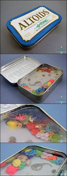 For Sale - Miniature Coral Reef Altoids Tin by Bon-AppetEats on deviantART Polymer Clay Projects, Polymer Clay Charms, Polymer Clay Creations, Resin Crafts, Resin Art, Clay Art, Cute Crafts, Diy And Crafts, Craft Projects