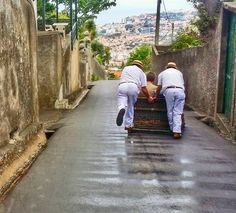 Madeira, Portugal - carros de Cestos, Monte