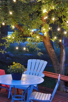 lights in the summer backyard = cozy ...love the idea of lights in the trees!