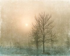 Photo of Sun behind Fog and Trees - Fine Art Photo Entitled Hope - 11 x 14