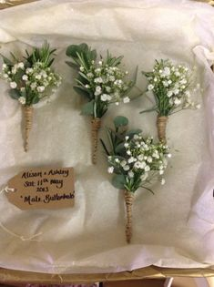 Love the mix of rosemary and babys breath. Would have the bottom warped in navy or clean white.
