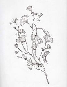 Smal Tattoo, Botanisches Tattoo, Art Deco Tattoo, Botanical Tattoo, Botanical Drawings, Botanical Art, Branch Drawing, Leaf Drawing, Flower Tattoos