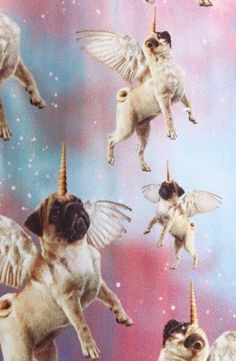 Home of Global Pug Domination - Join The Pugs - Visit us for unstoppable cuteness. Adorable pug and pug puppy cuteness are always featured on Join the Pugs. Animals And Pets, Funny Animals, Cute Animals, Wallpaper Hipster, Pug Wallpaper, Iphone Wallpaper, Image Beautiful, Pugs And Kisses, Pug Art