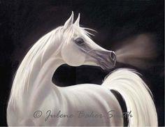 Arabian Stallion Horse Contemporary Fine Art Print by ArtByJulene, $15.00