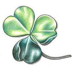 Four Leaf Clover Designs tattoo drawings | Flower Tattoos, Tattoo Designs Gallery - Unique Pictures and Ideas