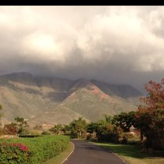 Maui, the drive looks just like this.