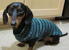 Ravelry: Easy Dog Sweaters pattern by Talking Tails
