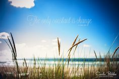 The only constant is change ...so keep calm  quote, nature, sun, beach