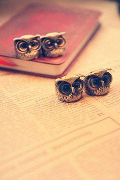 owls, owls, owls