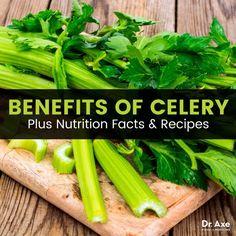 Benefits of Celery - Dr.Axe
