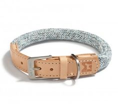 The Lucca Dog Collar