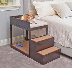 The Pet's Bedside Bunk Dogs dog furniture Cute Dog Beds, Diy Dog Bed, Pet Beds For Dogs, Unique Dog Beds, Wood Dog Bed, Bunk Beds With Stairs, Kids Bunk Beds, Dog Stairs For Bed, Raised Dog Beds