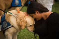 Twelve specially trained golden retrievers were brought to the city to provide emotional relief for victims, emergency workers and families of those killed.