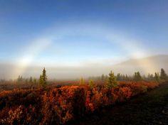 fogbows - Google Search