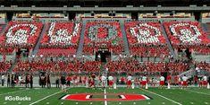 O-H-I-O in Ohio Stadium 2014